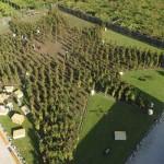 A fonte está localizada na vinícola Dora Sarchese Vini, em Abruzzo